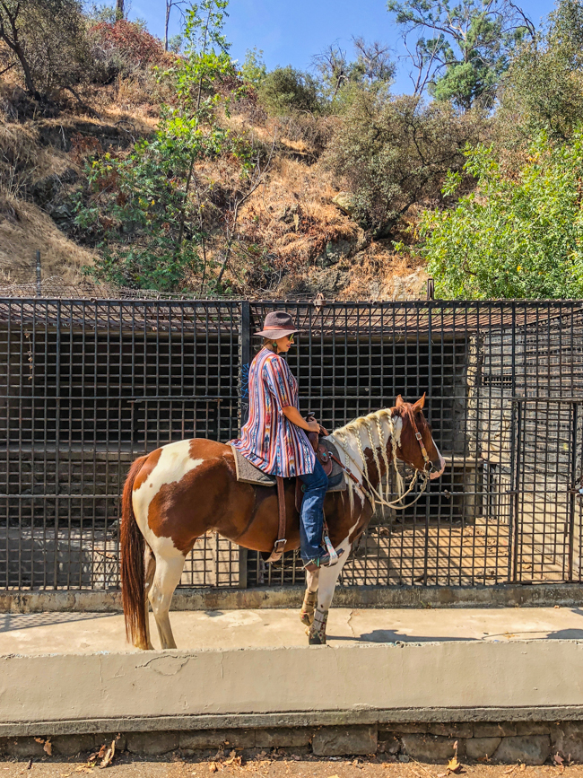 horseback riding to the old zoo in L.A.