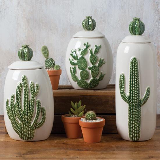 Coffret de cactus en céramique