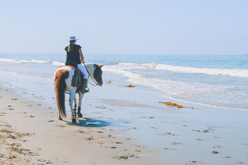 Dia de praia a cavalo